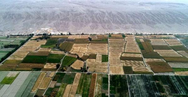 新疆环境影响评价的主要内容
