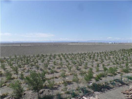 新疆水土保持监理的意义